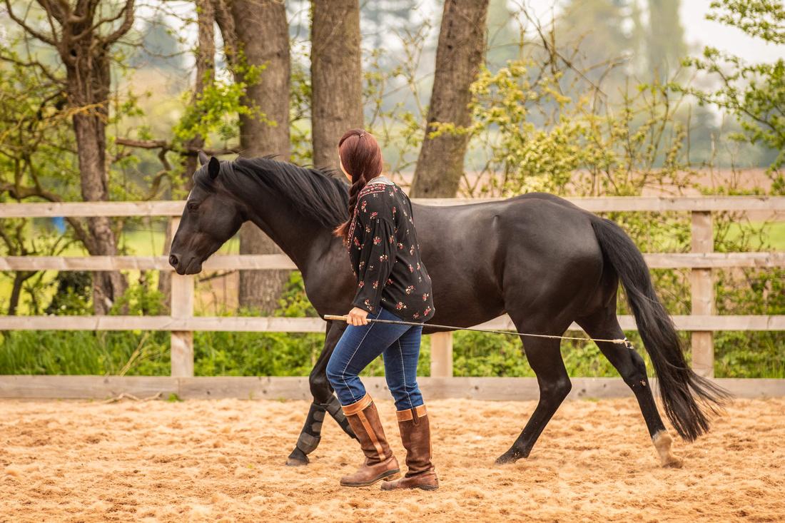 Idyllwild Horsemanship 100-min