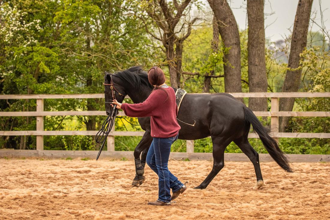 Idyllwild Horsemanship 8-min