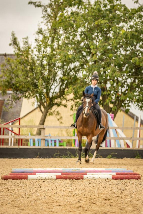 Amie Equestrian 82