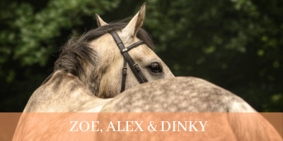 zoe and alex and dinkyCover